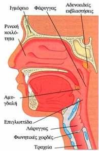 >Αυξάνονται τα κρούσματα καρκίνου του στόματος